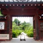 大巧寺だけじゃない!神奈川県での安産祈願スポット6選