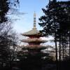 東京都日野市の安産祈願 – 高幡不動尊 (たかはたふどうそん)