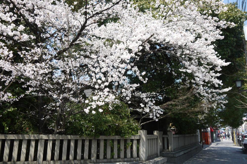 京都府 京都熊野神社