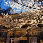 滋賀県大津市の安産祈願 – 石山寺 (いしやまでら)