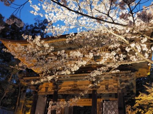 滋賀県 石山寺