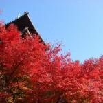 愛知県名古屋市の安産祈願 – 興正寺 (こうしょうじ)