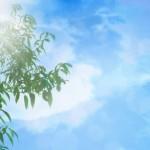 岩手県奥州市の安産祈願 – 陸中一宮 駒形 (こまがた) 神社