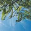 福岡県福岡市の安産祈願 – 姪浜 (めいのはま) 住吉神社