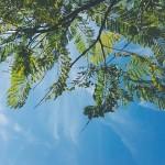岡山県倉敷市の安産祈願 – 由加神社本宮 (ゆがじんじゃほんぐう)