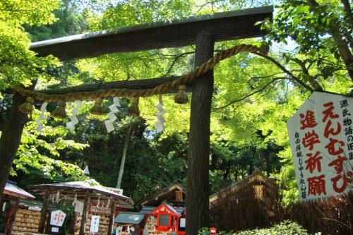 京都府  野宮神社
