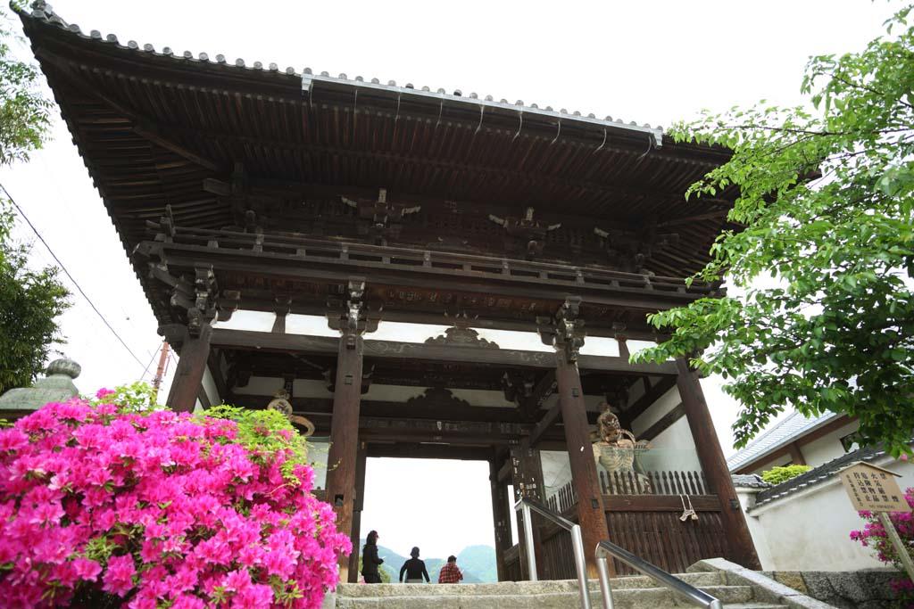 奈良県葛城市 當麻寺