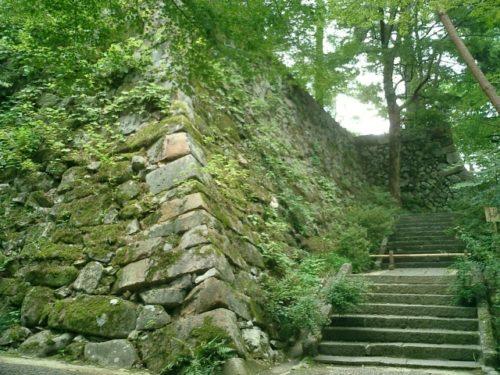 京都府 湯の花・丹波・美山周辺エリアのマタニティプランのあるお宿